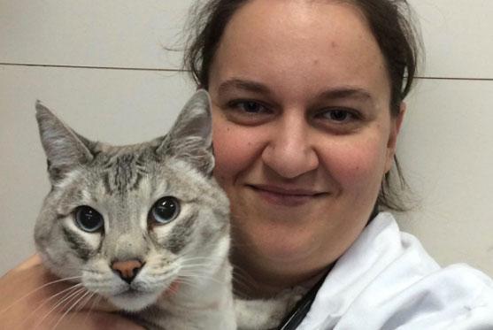 Julie Brunette est Dre. vétérinaire et fait partie de l'équipe à la Clinique vétérinaire des petits animaux de l'Estrie